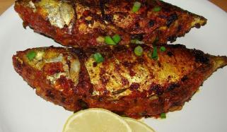 Dambra Fish