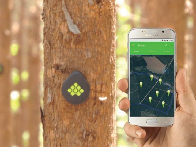 ایجادات کے درخت میں مزید شگوفے پھوٹے