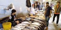 Mosa Colony Fish Market Karachi