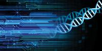 Scientists Hack A Computer Using Dna