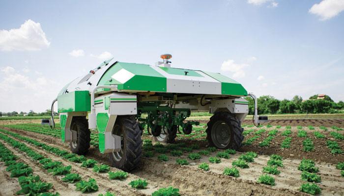 روبوٹس کے ذریعے سبزیوں کی کاشت