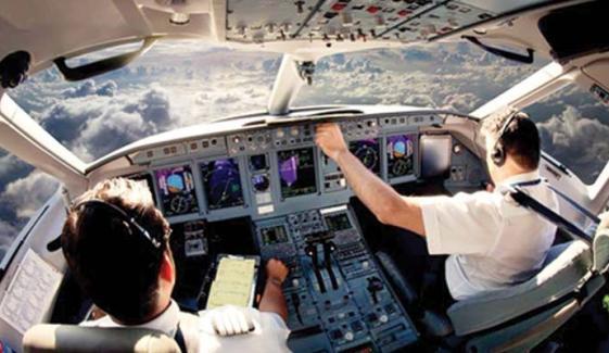 Fake Flying Licenses