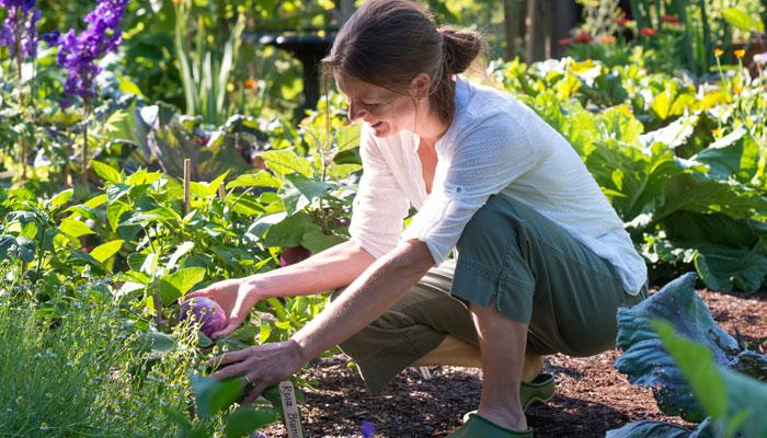 ڈپریشن کم کرنے کیلئے باغبانی کیجئے