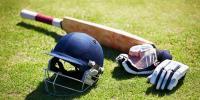 Departmental Cricket