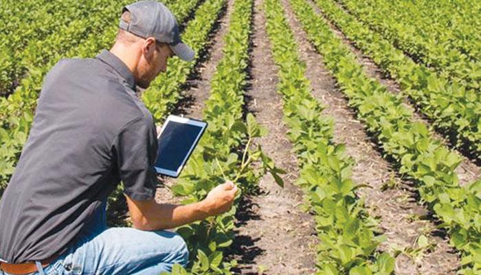 زرعی شعبہ میں کیریئر کے مواقع