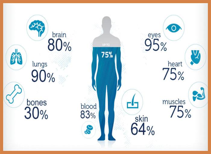 صحت مند زندگی کے لئے پانی پینے کی اہمیت