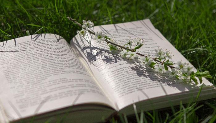 ادب میں خیر و شر