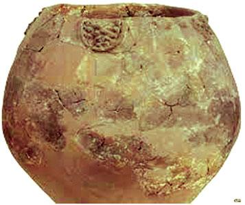 سندھ کی گم گشتہ تہذیب میں قدیم باشندوں کی خوراک