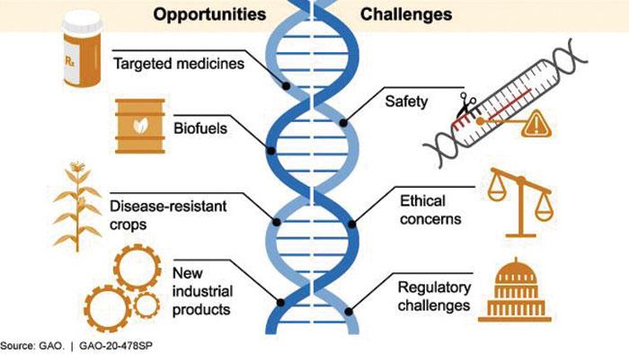 جینیاتی ترمیم بہ ذریعہ جینیاتی اوزار
