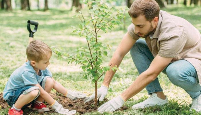 ماحولیا ت کے تحفظ کیلئے درخت لگائیں