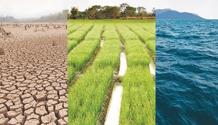 ماحولیاتی تبدیلیوں کی چند وجوہات
