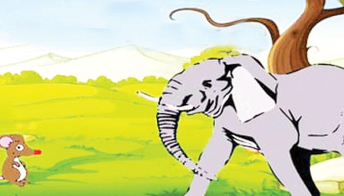 چوہیا نے ہاتھی سے دبوائے پاؤں