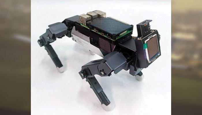 آواز کے اشارے پر کرتب دکھانے والا روبوٹ
