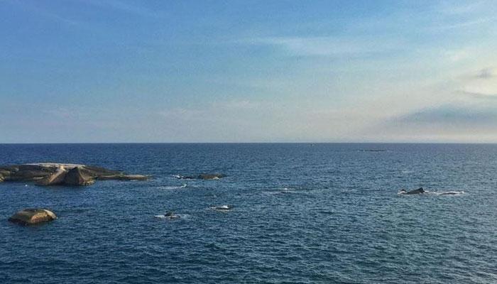 دنیا کے بڑے بڑے سمندر... ''کتنے پانی میں ہیں؟''