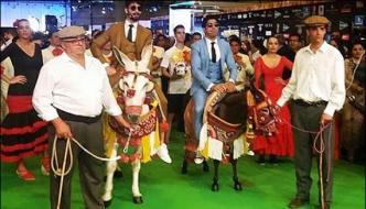 Shahid Kapoor Farhan Akhtar Ride A Donkey At Iifa Awards 2016