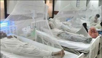 4 People Including 3 Doctors Affected With Congo Virus In Bahawalpur