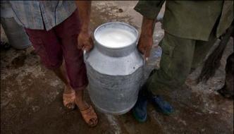 Sale 12 Thousand Liters Of Milk Found Harmful Detain 5
