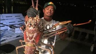 Lobster Weighing 14 Pounds Found At Shore Of Bermuda