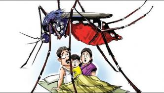 Severe Dengue In Thar 162 Patients Affected