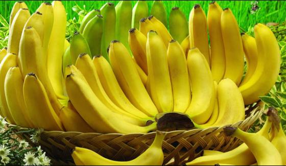 Bananas Crop Under Threat Of Extinction