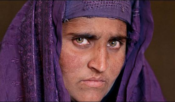 Sharbat Gula Case Postpones Till Tomorrow