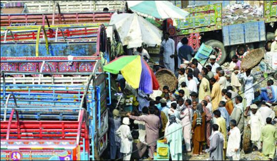 Fruit Trucks Didnt Reached Karachi Due To Islamabad Dharna