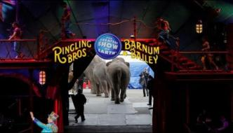 After One Hundred Years Of The American Circus