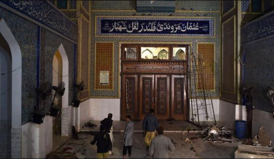 Lal Shebbaz Qalander Suicide Blast Investigation