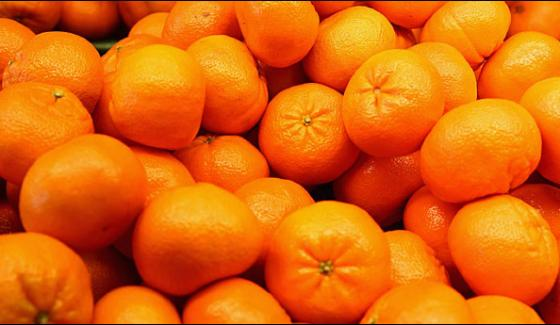 China Has Become A New Market For Export Of Pakistani Orange
