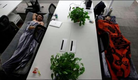 Chinese Companys Unique Offer Come To Work And Seep