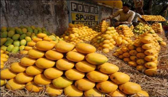 King Of Fruit Mango In Market