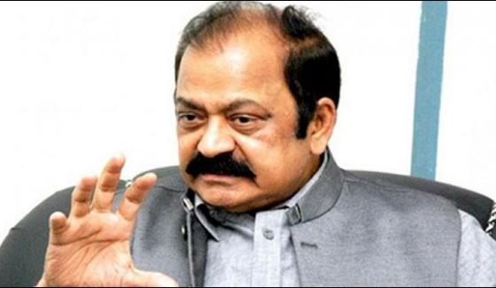 No Possibility Of Imrans Becoming Prime Minister Rana Sana
