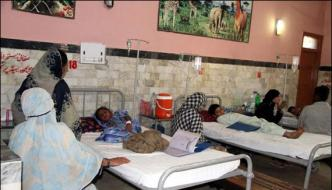 People Still Worry Of Chikungunya Increase In Patients Continues