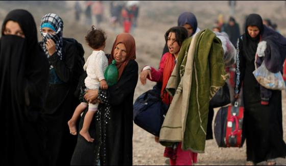 Daesh Made One Lakh Citizens As Human Shiled In Mosul Un