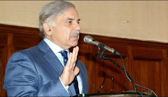 Pakistan Created History By Defeated Traditional Opponent Shahbaz Sharif