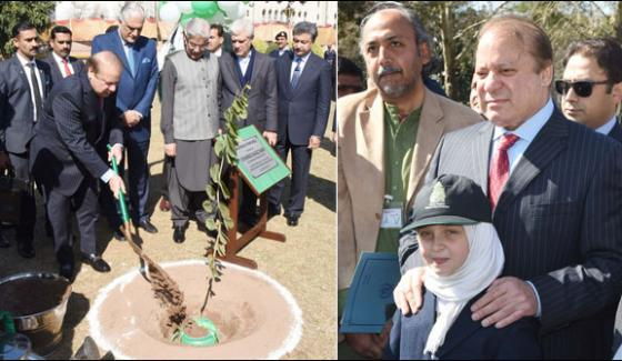 Green Pakistan Campaign