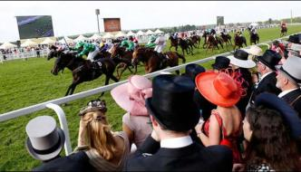 Horses Annual Race In The Royal Race Course In Uk