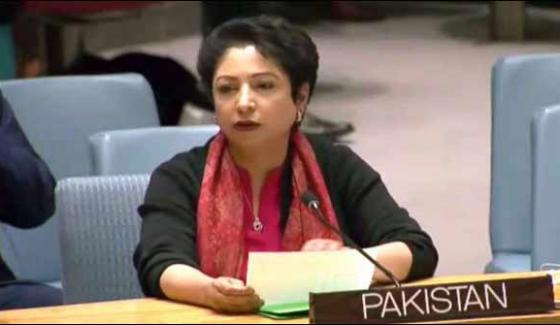 Discount Of Some Countries On Nsg Challenge For Ntp Maleeha Loodhi