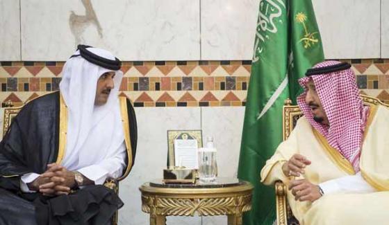 Uae Main Character Of Qatar Saudia Arabia Conflict