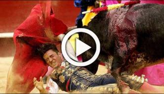Bull Injures Matador During Bull Fighting In Spain