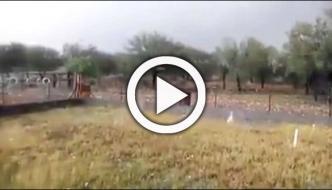 Huge Hailstones Pelting Down In Savage Storm