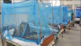 Over 800 Hundred People Affected By Dengue In Peshawar