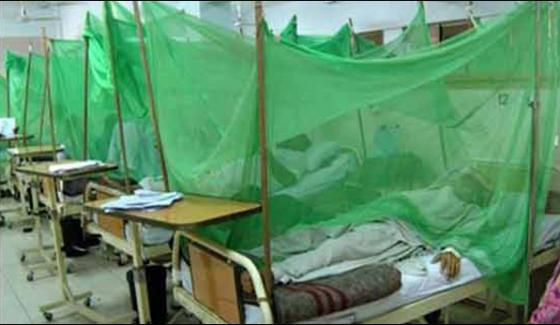 Khyber Agency 11 More Cases Of Dengue Reported Total Number Of Cases Becomes 26