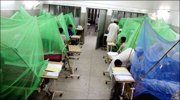 Peshawar Two More Dengue Patients Died