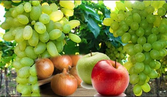 Baluchistan Demanding Closure Of Grapes Apples Tomatoes And Onions