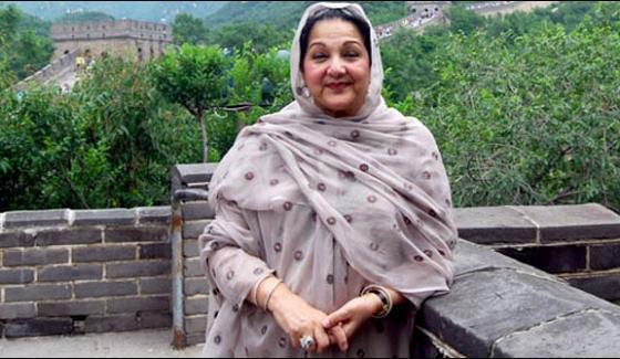 Rejects Requests Against Kulsoom Nawaz