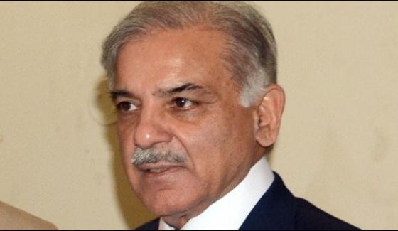 Punjab Chief Minister Shahbaz Sharif Returned Homeland