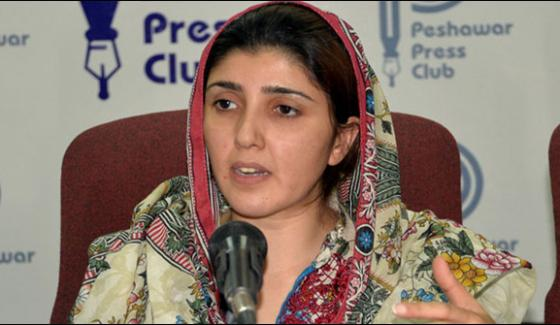 Application Against Ayesha Gula Lai Corruption Rejected