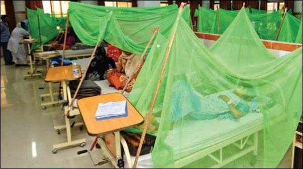 Lahore The Number Of Dengue Patients Reaches To 512