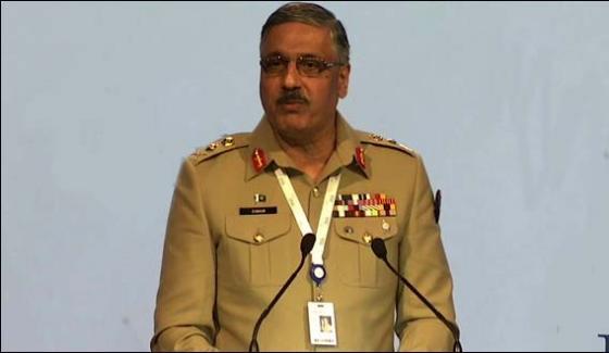 India Do Terrorism In Pakistan General Zubair Mahmood